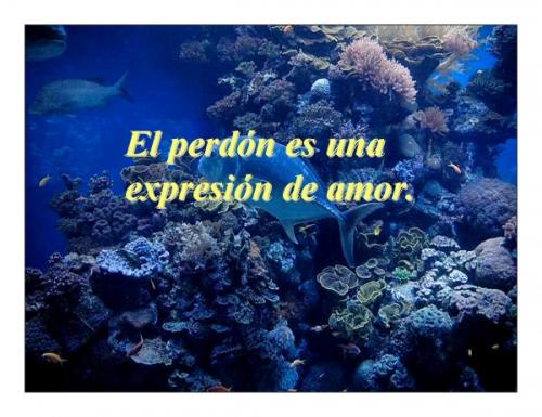http://cdn0.grupos.emagister.com/documento/el_perdon_179560_t0.jpg