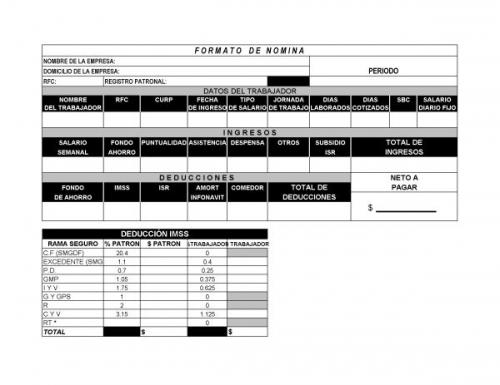 Documento Formato De Nomina E Imss