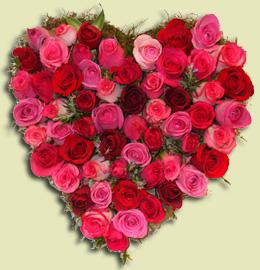 Imagen mi corazon lleno de rosas for Cuarto lleno de rosas