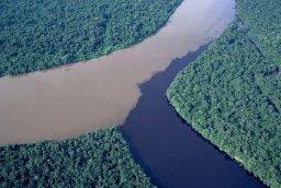 Unión del río Orinoco y el Caroní